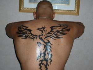 Tribal Phoenix Tattoo Images