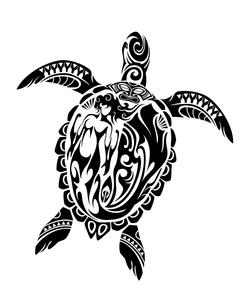 Gallery For gt Tribal Turtle Tattoo With Hibiscus