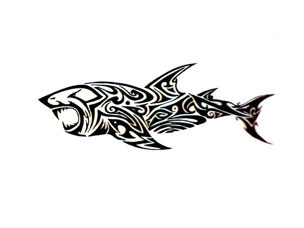 15 awesome tribal shark tattoos only tribal tribal tattoos shark buycottarizona Choice Image
