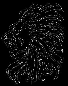 Lion Tribal Tattoos