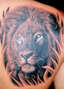 Tribal Lion Head Tattoos