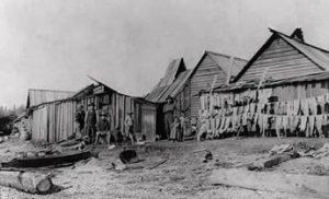 Makah Tribe Houses